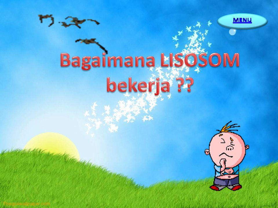 Bagaimana LISOSOM bekerja