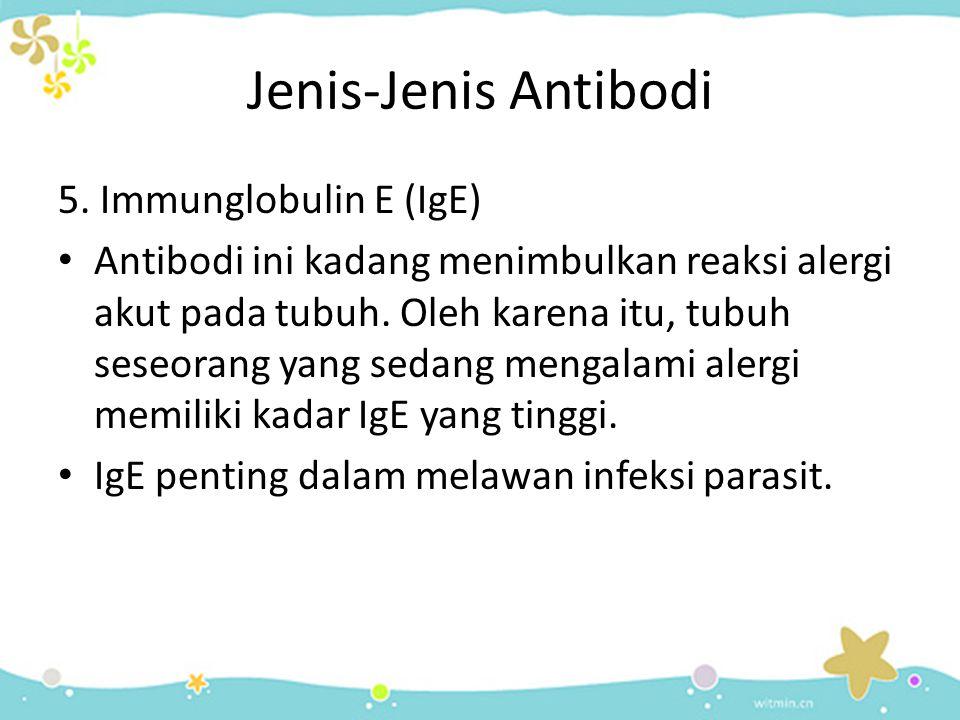 Jenis-Jenis Antibodi 5. Immunglobulin E (IgE)
