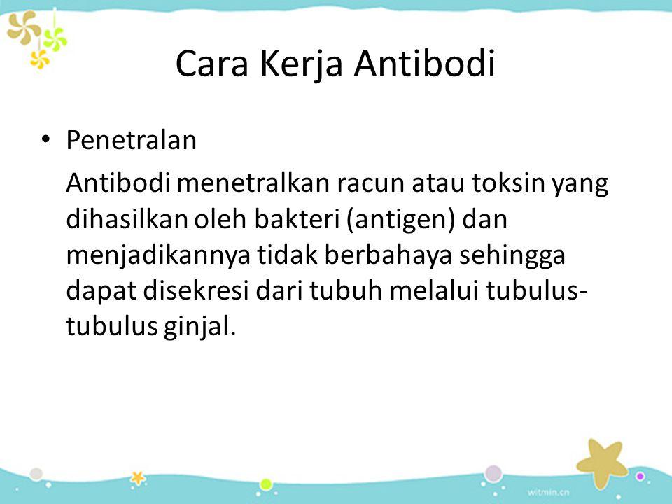 Cara Kerja Antibodi Penetralan