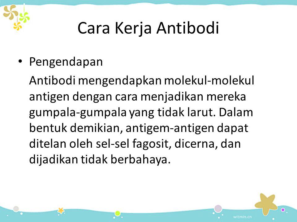Cara Kerja Antibodi Pengendapan