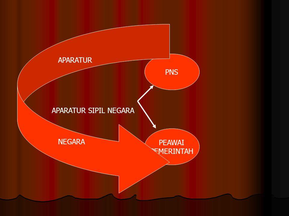 APARATUR SIPIL NEGARA APARATUR PNS PEAWAI PEMERINTAH NEGARA