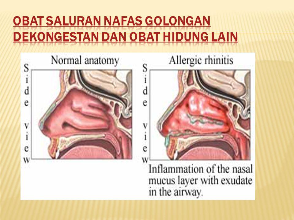 Obat saluran nafas golongan dekongestan dan obat hidung lain