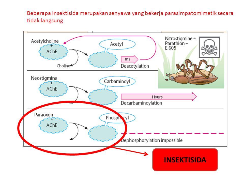 Beberapa insektisida merupakan senyawa yang bekerja parasimpatomimetik secara tidak langsung