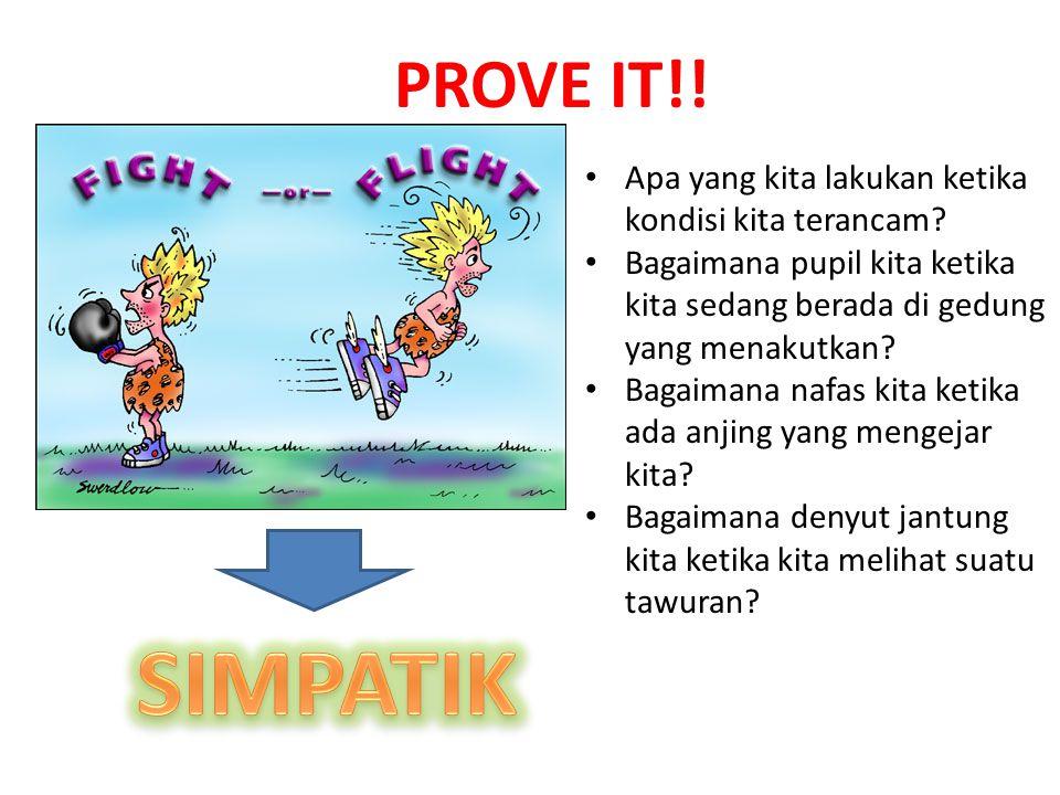 PROVE IT!! Apa yang kita lakukan ketika kondisi kita terancam Bagaimana pupil kita ketika kita sedang berada di gedung yang menakutkan