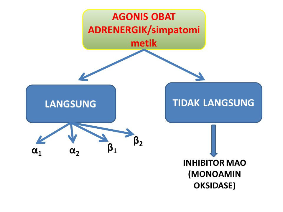 AGONIS OBAT ADRENERGIK/simpatomimetik