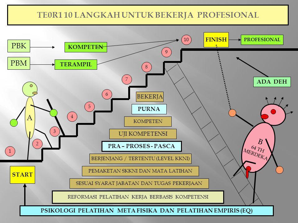 TE0R1 10 LANGKAH UNTUK BEKERJA PROFESIONAL