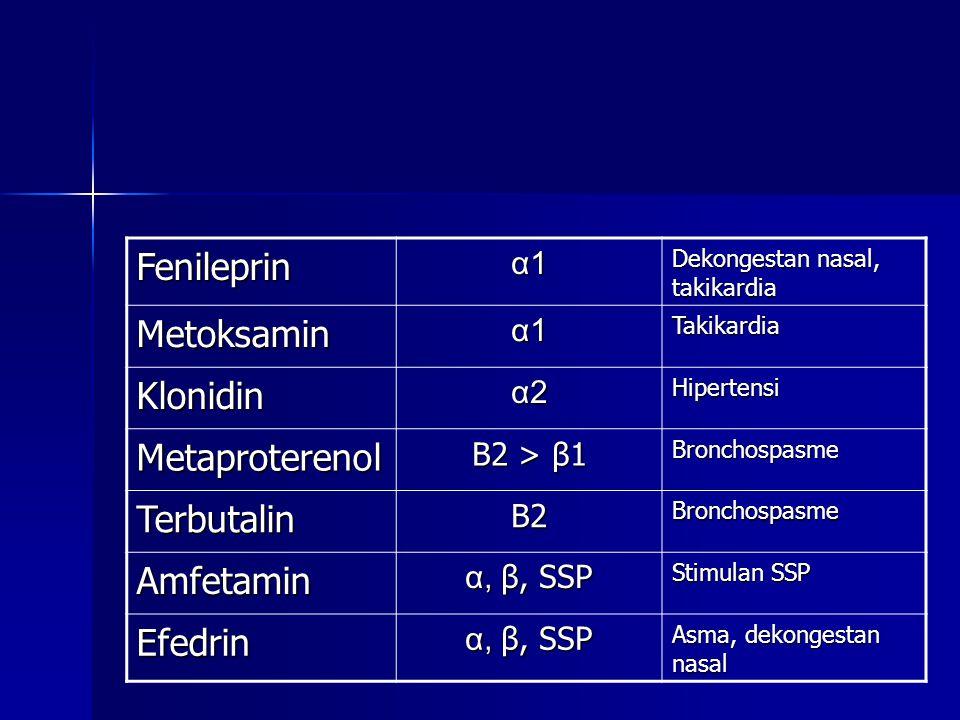 Fenileprin Metoksamin Klonidin Metaproterenol Terbutalin Amfetamin
