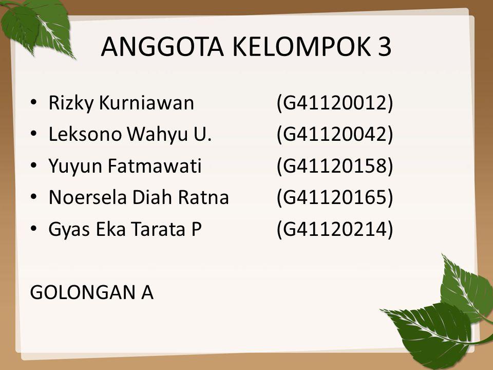 ANGGOTA KELOMPOK 3 Rizky Kurniawan (G41120012)