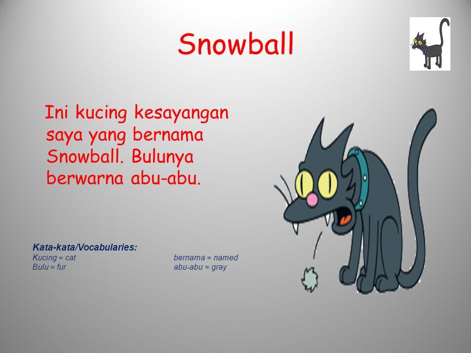 Snowball Ini kucing kesayangan saya yang bernama Snowball. Bulunya berwarna abu-abu. Kata-kata/Vocabularies: