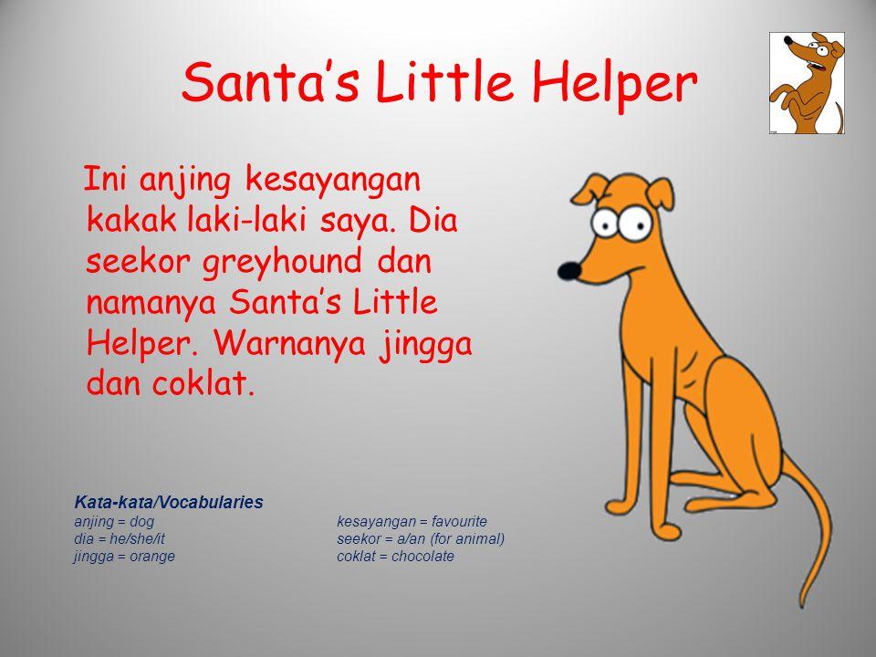 Santa's Little Helper Ini anjing kesayangan kakak laki-laki saya. Dia seekor greyhound dan namanya Santa's Little Helper. Warnanya jingga dan coklat.