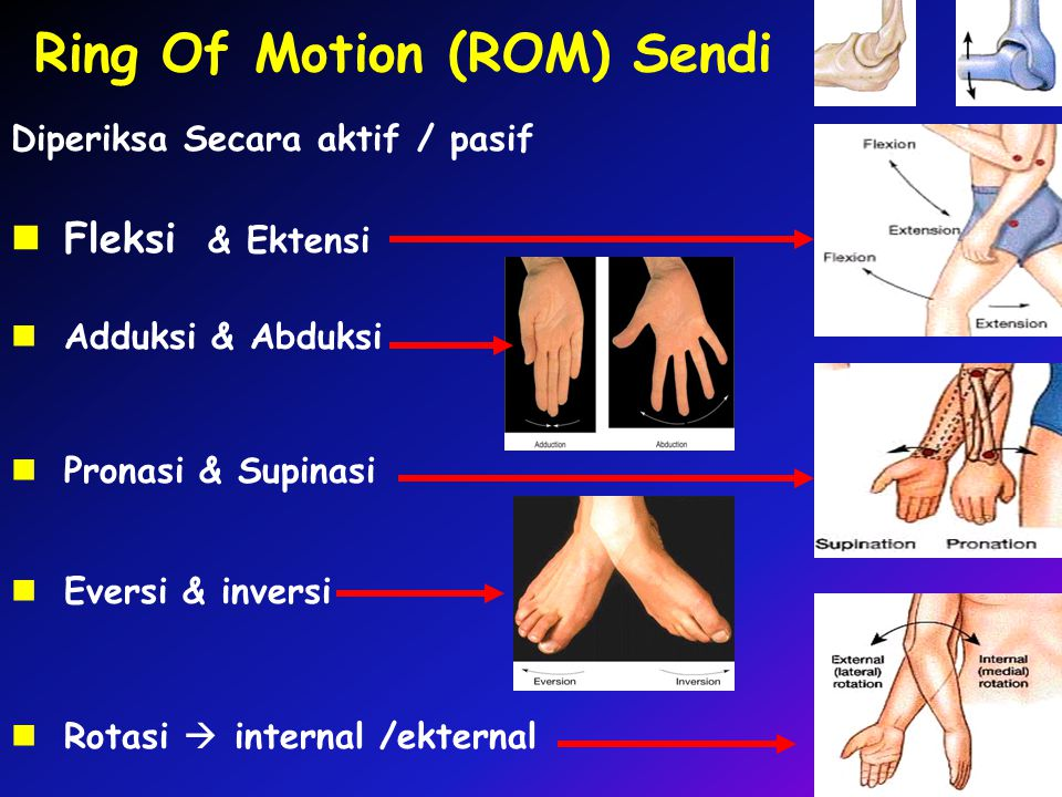 Ring Of Motion (ROM) Sendi