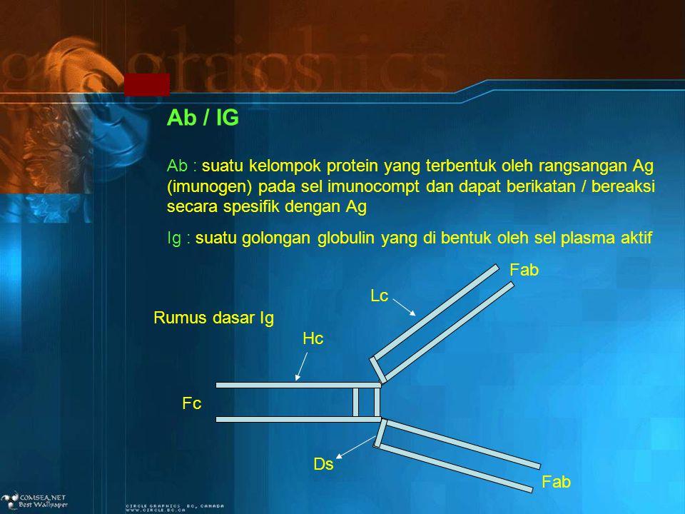 Ab / IG