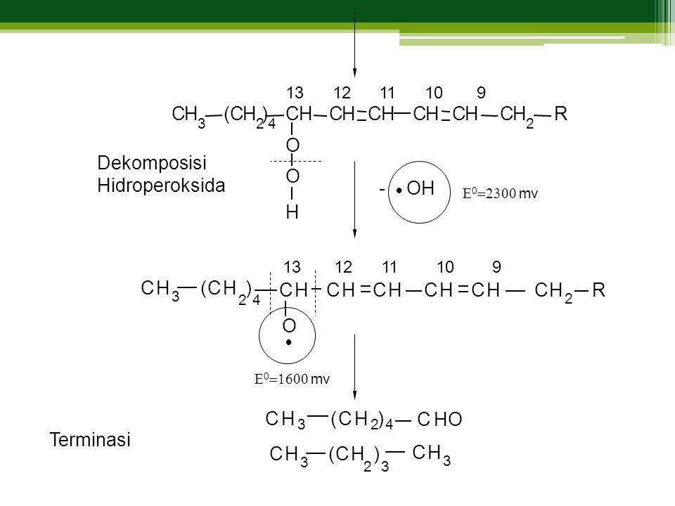 C H ( C H ) C H C H C H C H C H C H R O Dekomposisi Hidroperoksida O