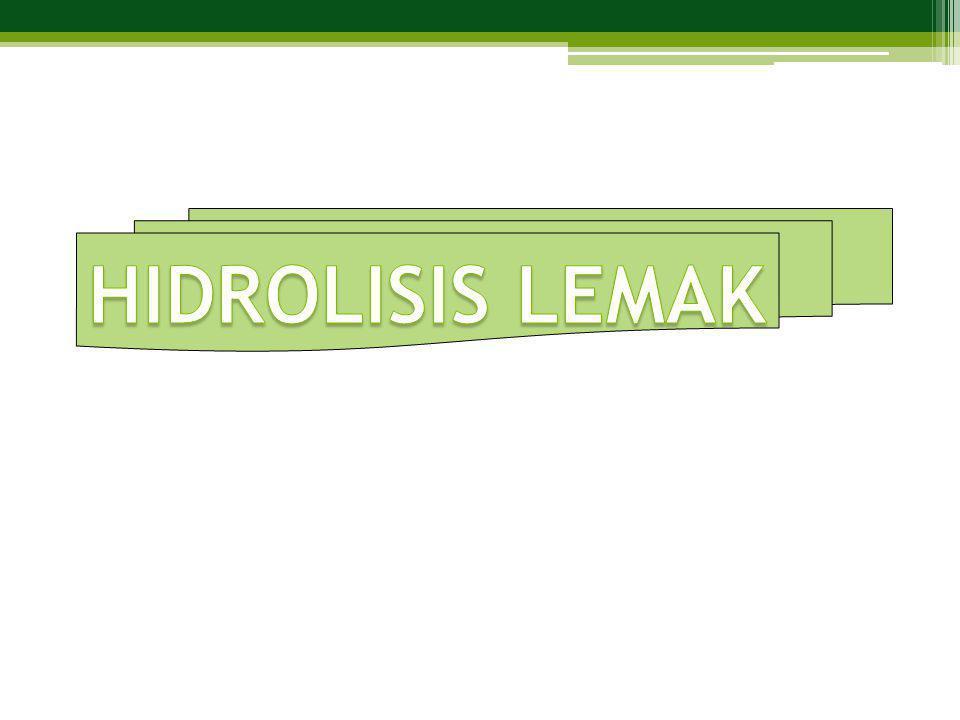 HIDROLISIS LEMAK