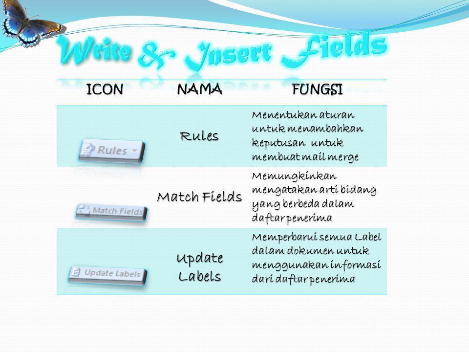 Write & Insert Fields Rules Match Fields Update Labels ICON NAMA