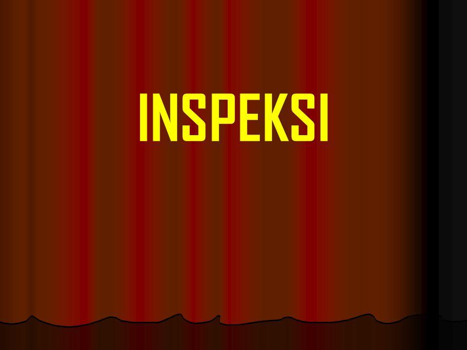 INSPEKSI