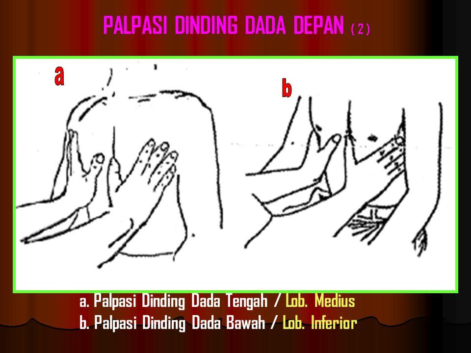 PALPASI DINDING DADA DEPAN ( 2 )