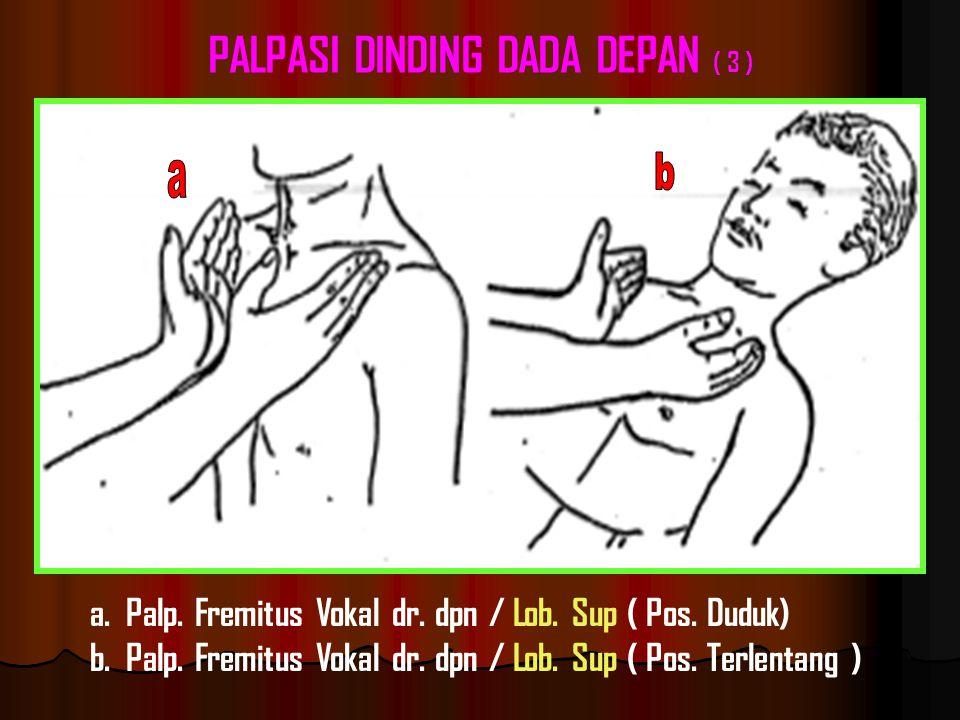 PALPASI DINDING DADA DEPAN ( 3 )
