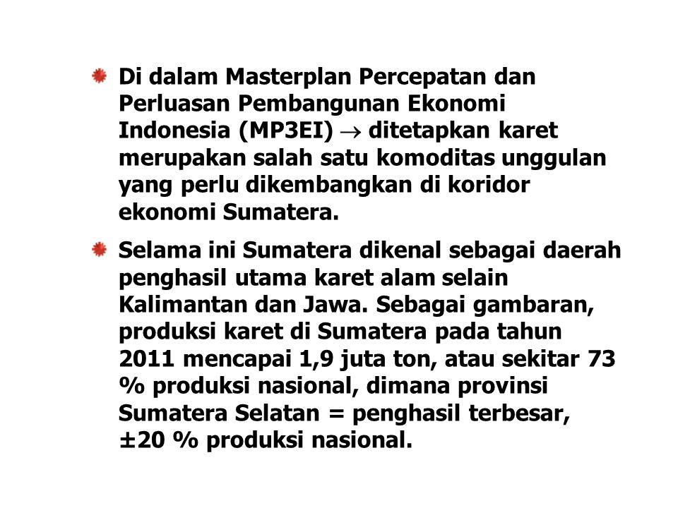 Di dalam Masterplan Percepatan dan Perluasan Pembangunan Ekonomi Indonesia (MP3EI)  ditetapkan karet merupakan salah satu komoditas unggulan yang perlu dikembangkan di koridor ekonomi Sumatera.