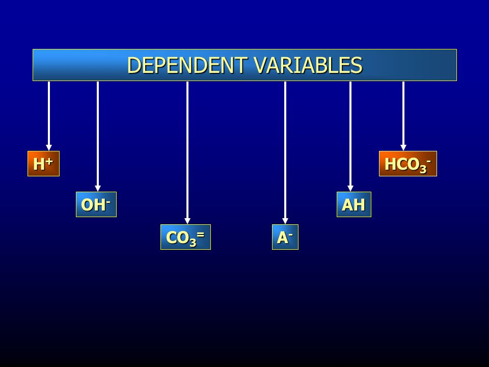 DEPENDENT VARIABLES H+ HCO3- OH- AH CO3= A-