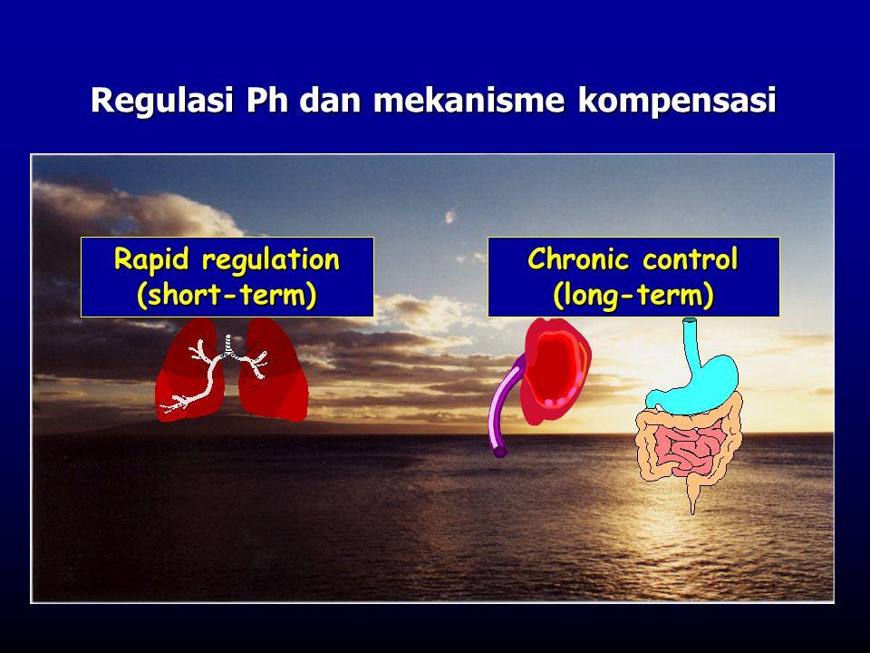Regulasi Ph dan mekanisme kompensasi
