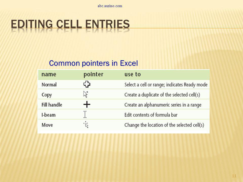abc.aurino.com Editing Cell Entries Common pointers in Excel