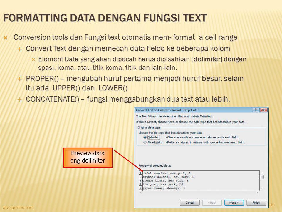 Formatting Data dengan Fungsi Text