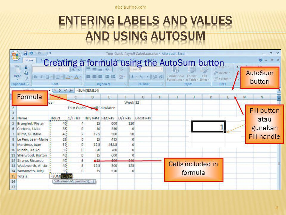 Entering Labels and Values and Using AutoSum