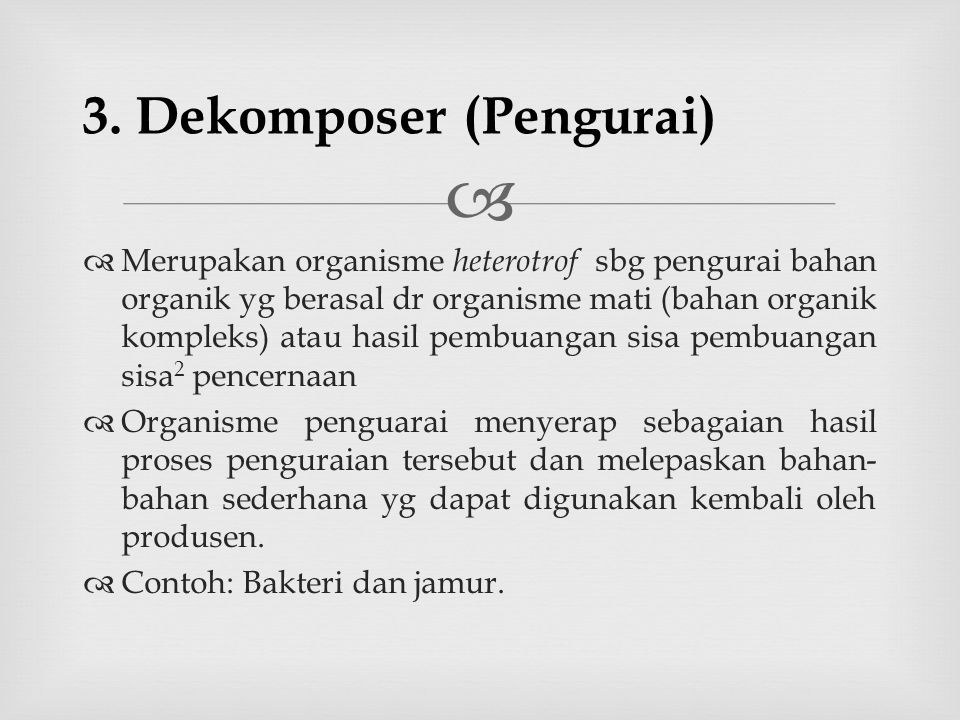 3. Dekomposer (Pengurai)