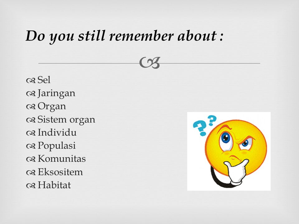 Do you still remember about :