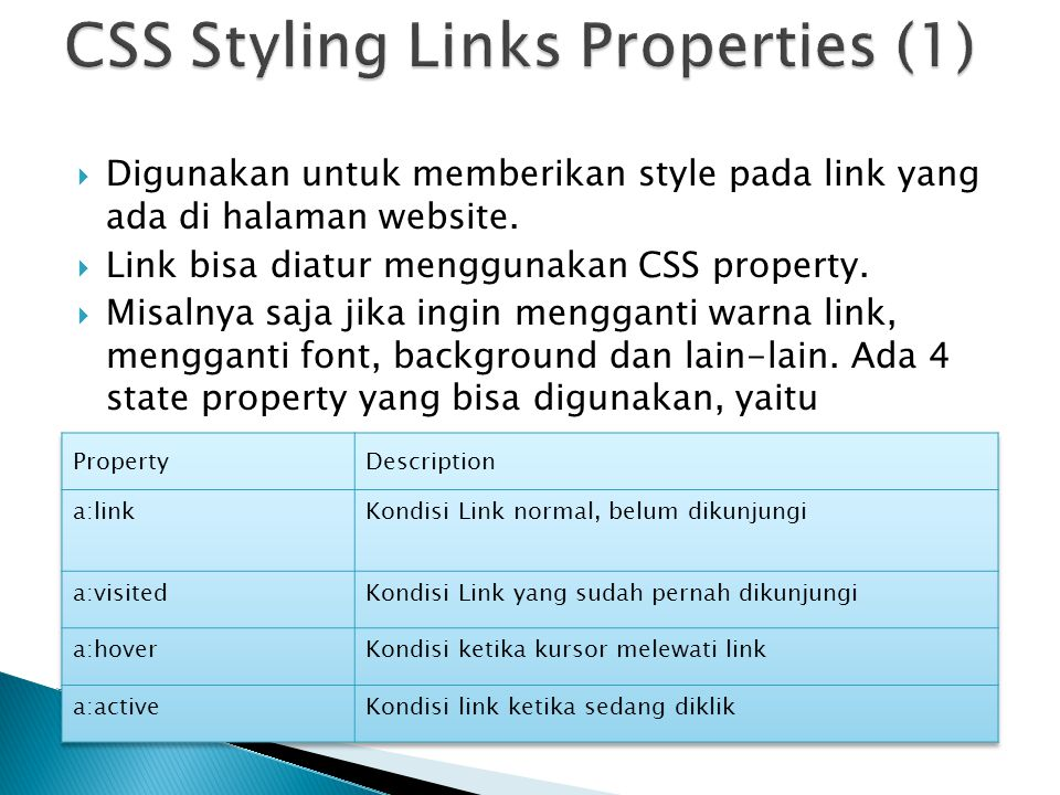 CSS Styling Links Properties (1)