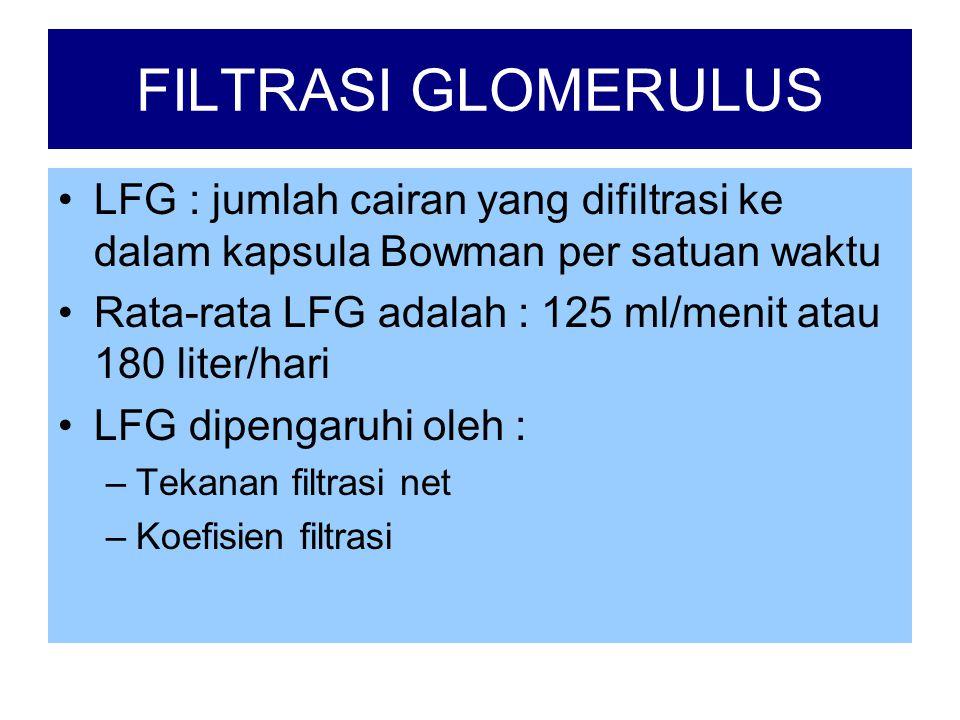 FILTRASI GLOMERULUS LFG : jumlah cairan yang difiltrasi ke dalam kapsula Bowman per satuan waktu.