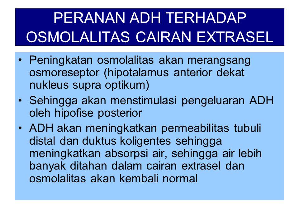 PERANAN ADH TERHADAP OSMOLALITAS CAIRAN EXTRASEL