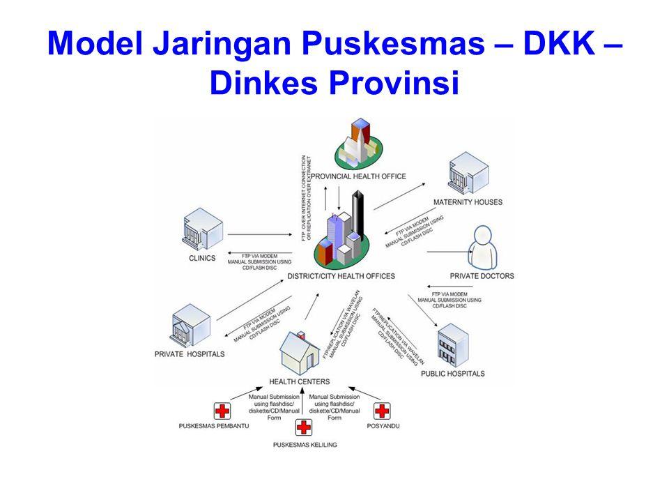 Model Jaringan Puskesmas – DKK –Dinkes Provinsi