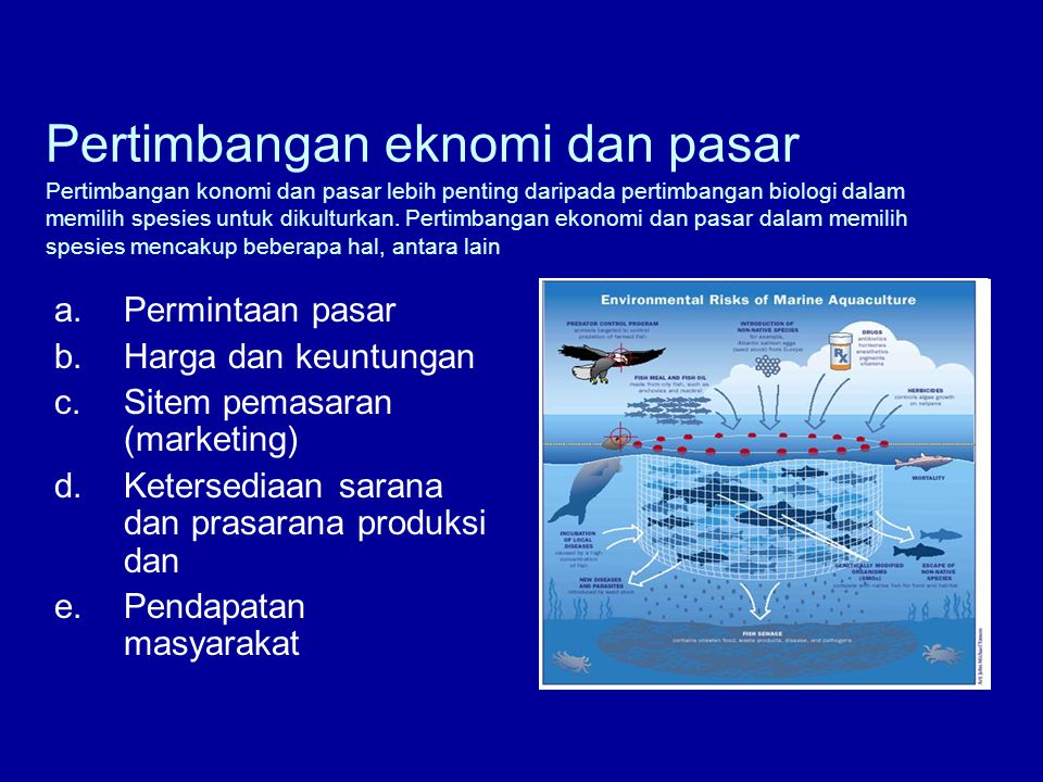 Sitem pemasaran (marketing)