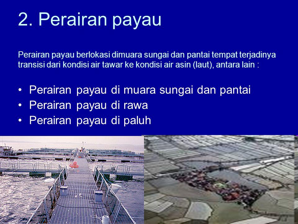 2. Perairan payau Perairan payau berlokasi dimuara sungai dan pantai tempat terjadinya transisi dari kondisi air tawar ke kondisi air asin (laut), antara lain :