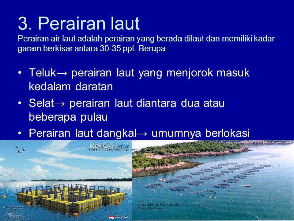 3. Perairan laut Perairan air laut adalah perairan yang berada dilaut dan memiliki kadar garam berkisar antara 30-35 ppt. Berupa :
