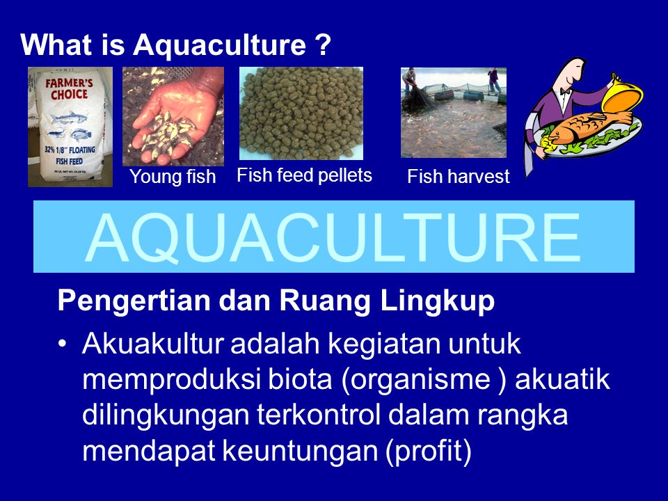 AQUACULTURE What is Aquaculture Pengertian dan Ruang Lingkup