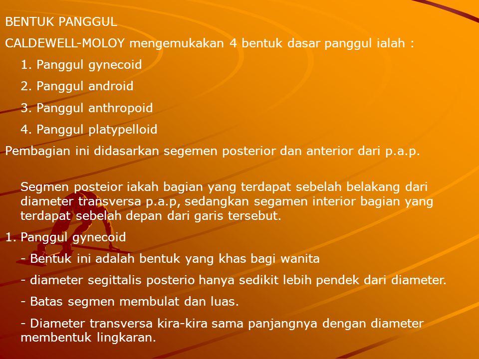 BENTUK PANGGUL CALDEWELL-MOLOY mengemukakan 4 bentuk dasar panggul ialah : 1. Panggul gynecoid. 2. Panggul android.