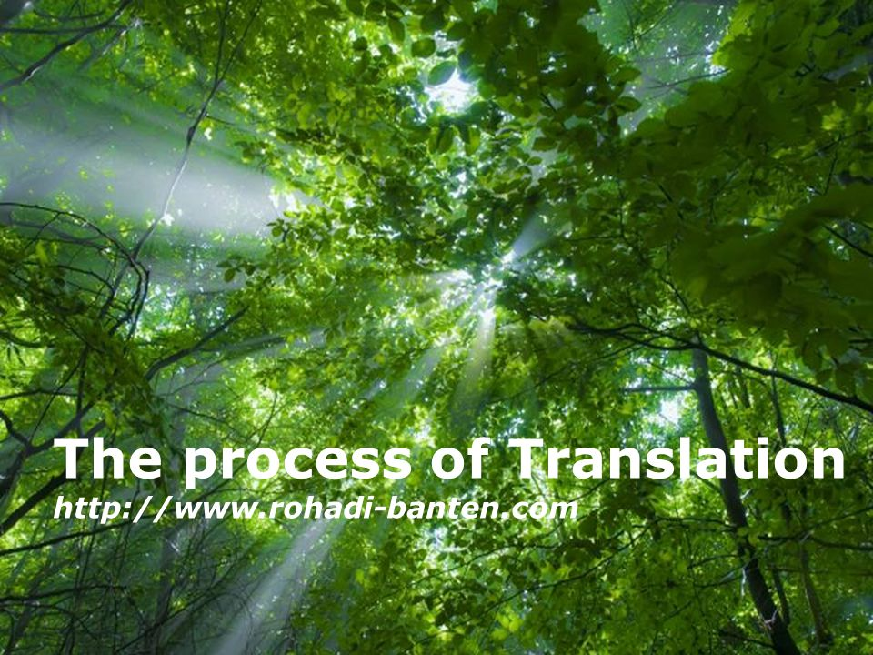 The process of Translation