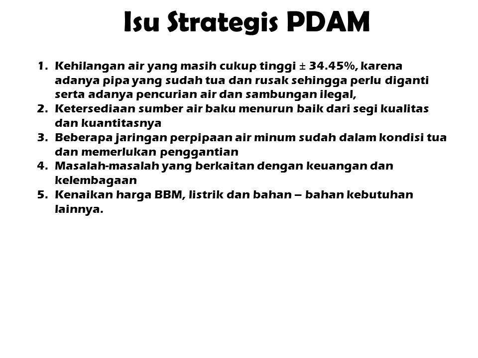 Isu Strategis PDAM