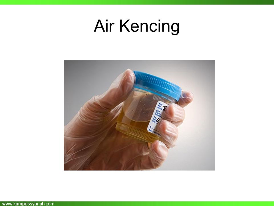 Air Kencing