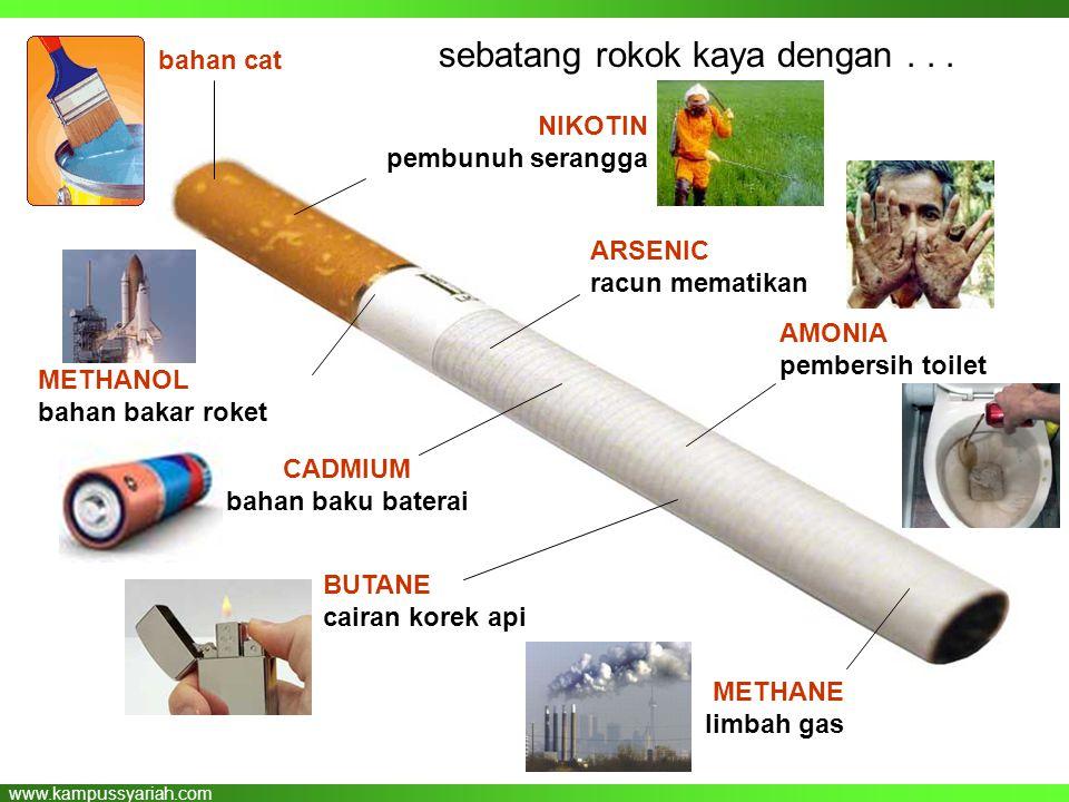 sebatang rokok kaya dengan . . .