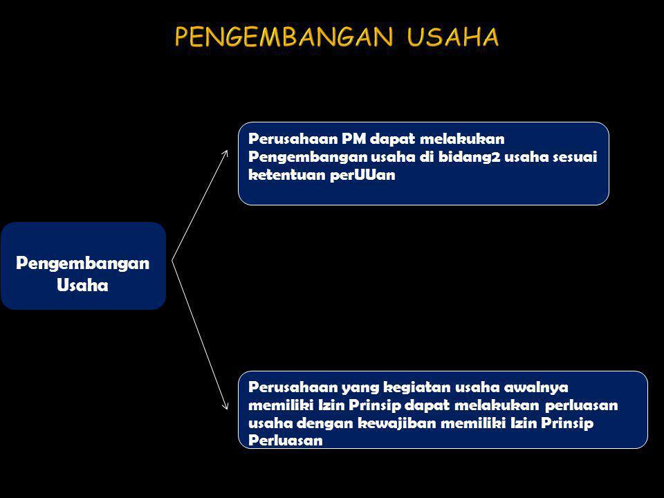 PENGEMBANGAN USAHA Pengembangan Usaha Perusahaan PM dapat melakukan