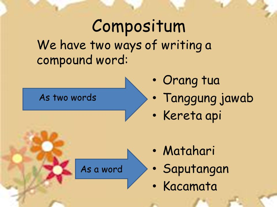 Compositum We have two ways of writing a compound word: Orang tua