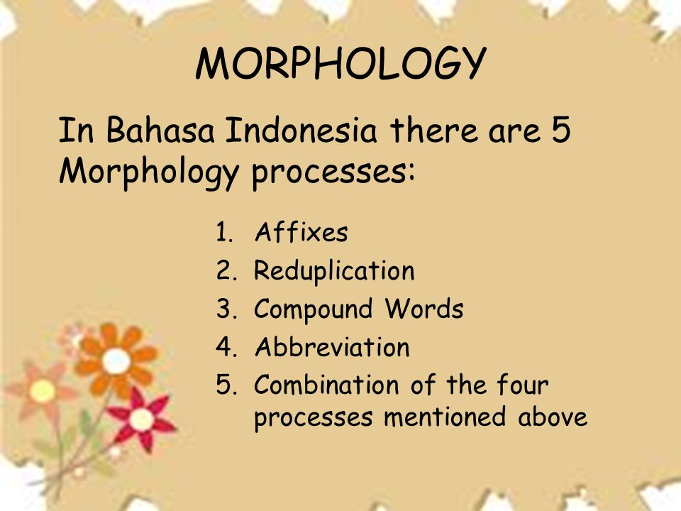 MORPHOLOGY In Bahasa Indonesia there are 5 Morphology processes: