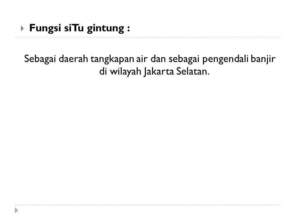 Fungsi siTu gintung : Sebagai daerah tangkapan air dan sebagai pengendali banjir di wilayah Jakarta Selatan.