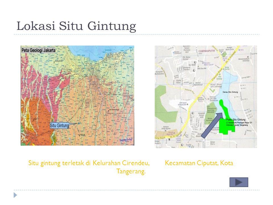Lokasi Situ Gintung Situ gintung terletak di Kelurahan Cirendeu, Kecamatan Ciputat, Kota Tangerang.