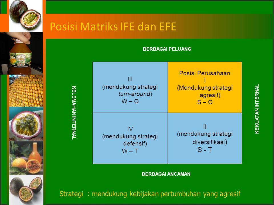 Posisi Matriks IFE dan EFE