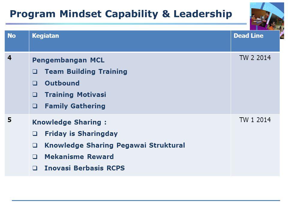 Program Mindset Capability & Leadership